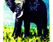 Psycho Elephant, digital print, a Jones Ave Artwork 8.5 x 11 print, original wildlife, from a Gaylord Perry painting