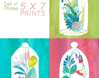 5x7 Set of three Terrarium Prints