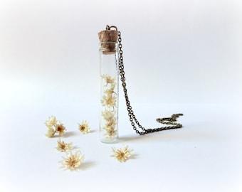 Hey Daisies - Curiosity vial bottle necklace terrarium Botanical Specimen flower Nature lover Gift  Woodland jewelry Gardener fall autumn