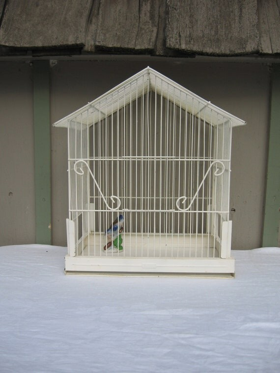 Wire Bird Cage - Ivory Metal Birdcage by Pacific - Large Decorative Bird Cage