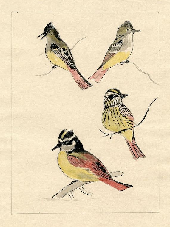 c.1915 FOLK ART BIRDS Original Hand Done Mixed Media Charming Lovingly Drawn