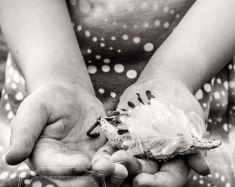 Black and White Lifestyle Child Photo. Photo of Child's Hands. Holding. Photo with Hands. Nature Photograph. Fine Art Photography