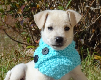 Dog Cowl, Dog Scarf, Knit Scarf for Dogs, Knit Cowl for Dogs - Size LARGE - Custom colors