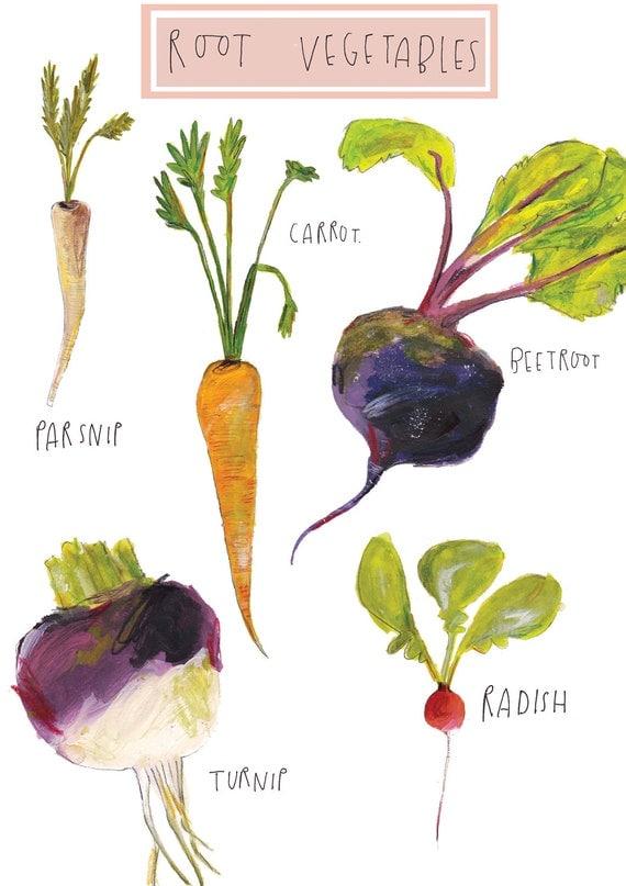 Root Vegetables Root Vegetables