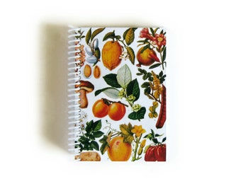 Fruit Print Small Spiral A6 Paper Cute Notebook, Back to School, Spiral Bound Writing Journal, Garden Journal Diary Sketchbook Gift Under 15