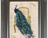 COUPON SALE Teal Peacock French chair printed as dictionary page art wall decor on old dictionary or music book page Digital art  No. 494.