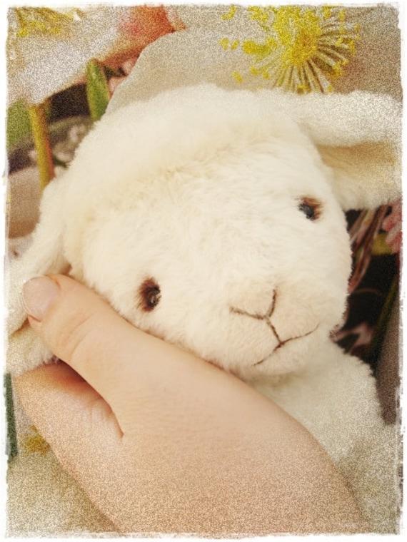"PDF Instant Download - Pattern / E-Book Baby Lamb "" HOPE "" :) - 5 Inch - by Eileen Seifert - Teddy-Manufaktur.de"