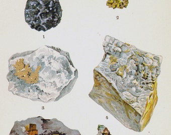 Platinum Gold Copper Ore Crystal Stone Mineral Vintage Lithograph Edwardian Geology Print To Frame 3