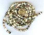 "4-5mm Hammershell Natural Shell Heishi Beads 24"" Strand"