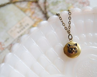 small vintage brass kitty cat face locket - grumpy cat