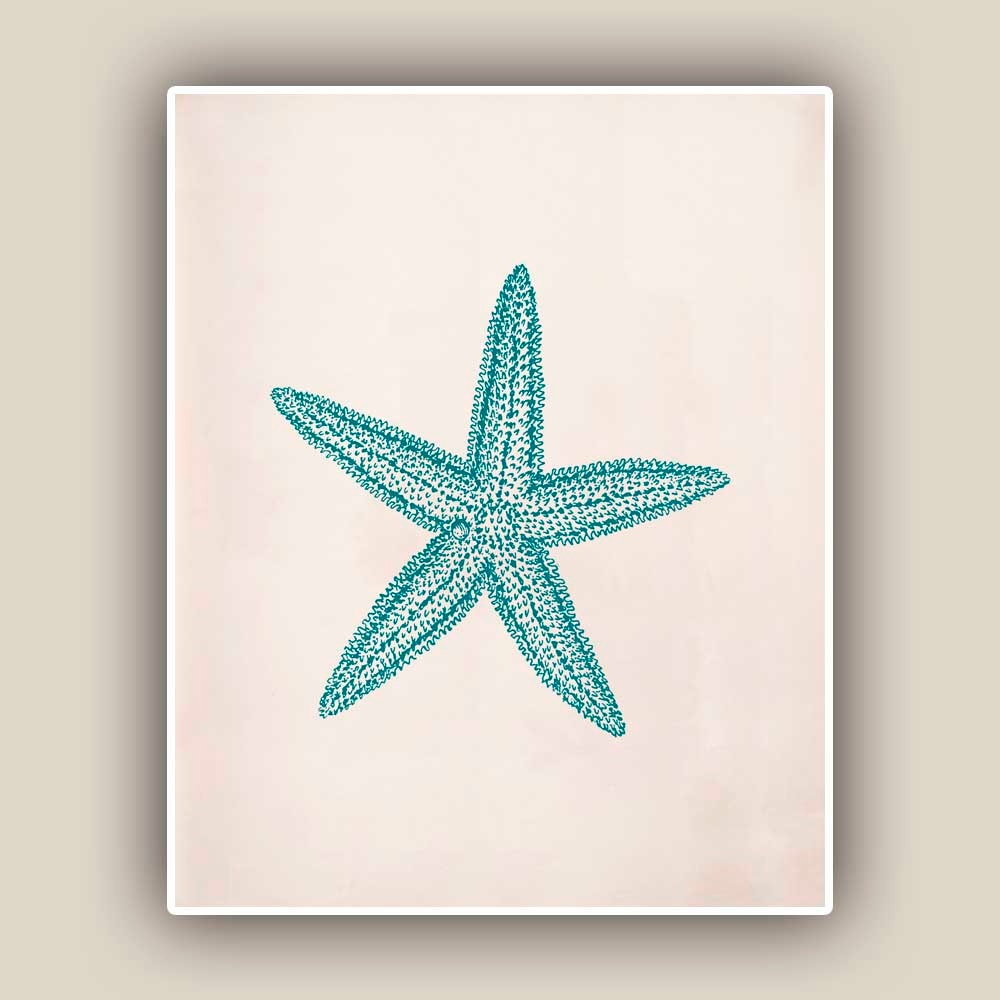 starfish print sea star 8x10 print marine wall decor