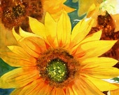 Giclée Flower Sunflower Floral Garden  Art watercolor painting