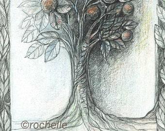 Silver Tree 5x7 print