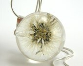 Whole Dandelion Pendant, Medium Resin Round with Sterling Silver Chain