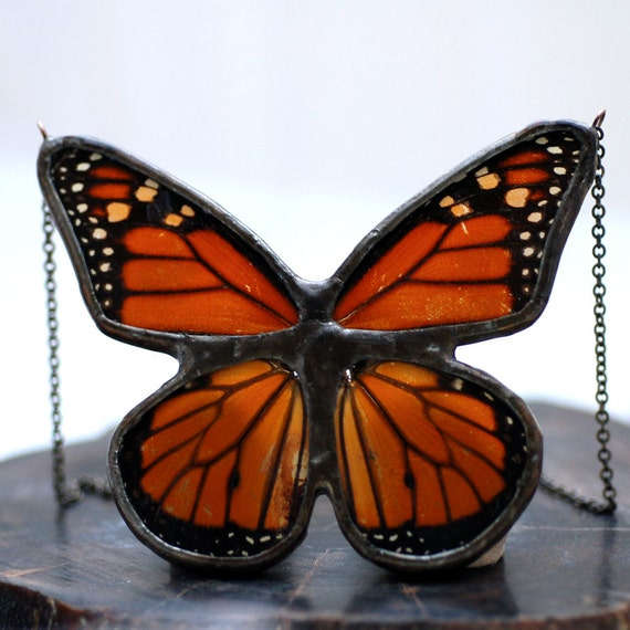 Real Butterfly Wing Necklace Full Monarch