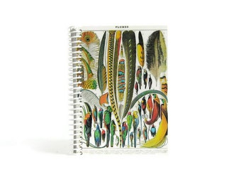 Feathers, Notebook, Natural History, Back to School, Gifts Under 15, Pocket Journal, Blank Notebook, Writing Journal, 4x6, Diary Journal