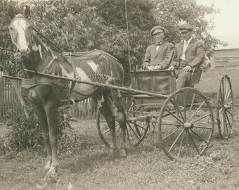 vintage photo 1910 Lars Wolden Men Caps Painted Horse and Buggy RPPC