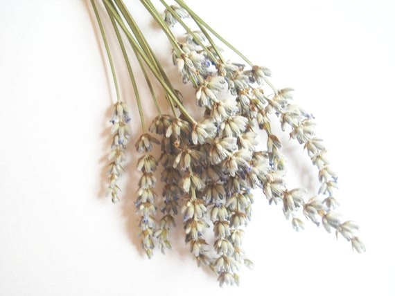 ONE DOLLAR Deals - Dried Lavender Herb and Recipe - Aromatherapy, Sachets, Potpourri, Ect. - PIF