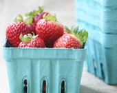24 Berry Baskets - Boxes - Containers - 2 Dozen.