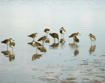 Sandpipers Photography  Dreamy Florida seascape Pale Blue Tropical beach Nautical wall decor 5x7, matted, 8x10 Photograph Metallic Paper
