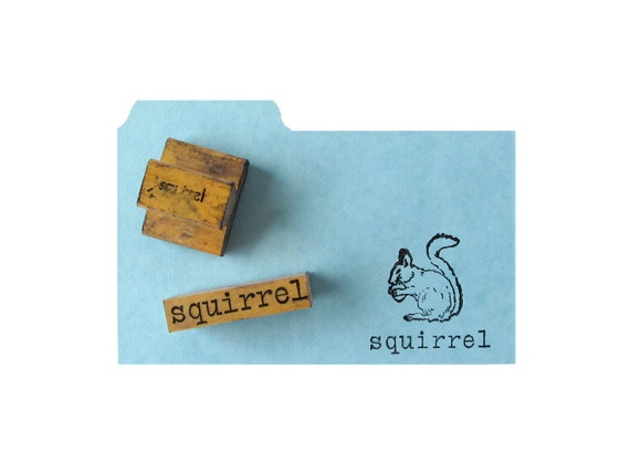 Vintage SQUIRREL Rubber Stamps - Set of 2