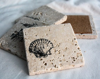 Seashell Coasters- set of 4