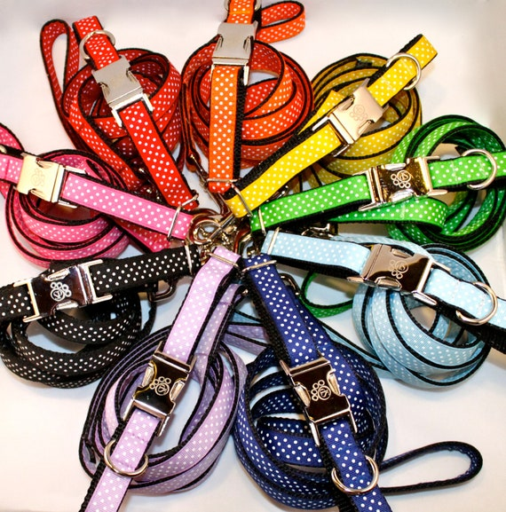 Dog Collar - Rainbow Dot Collar and Leash Matching Sets - Collar and leash set - swiss dot collar and leash - polka dot collar and leash