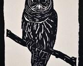 Sale 20% Off // OWL Papercut - Hand-Cut Silhouette // Coupon Code SALE20