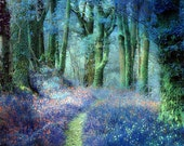 Seasonal Landscape, Forest, Trees, Flowers, Archival Giclee Print, Decor, Wall Art,  Expressionism Art