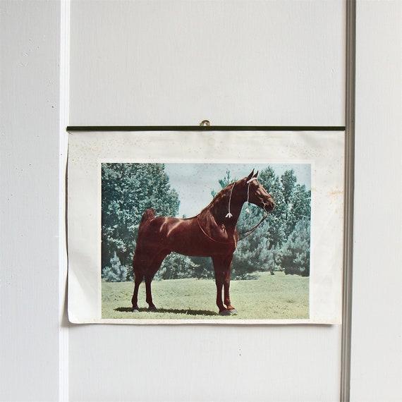 Vintage Horse Portrait Wall Hanging