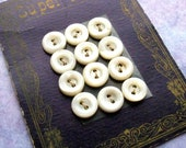 Antique Buttons - Collectible Super Pearl Card of 12 Mother of Pearl Buttons - LillianOlive