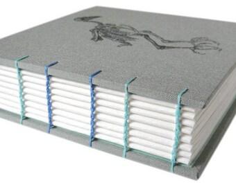 vulture skeleton book