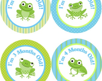 Monthly Baby Stickers Baby Boy/Frog Monthly Stickers/Blue and Green Baby Stickers/Boys Baby Shower Gift/Frog Monthly Stickers for Wee Ones