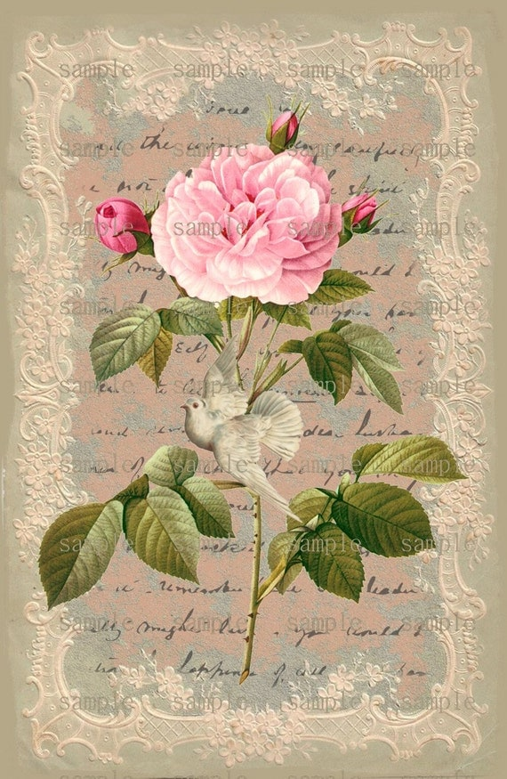 Lucrative image regarding printable pictures of roses