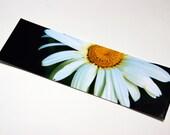 SALE - Shasta Daisy Photo Bookmark