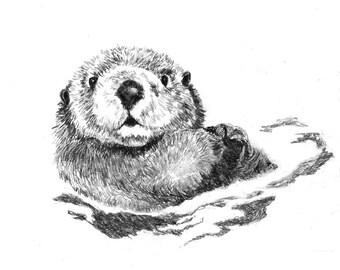 Otter Art - Little Swimmer - Otter Drawing