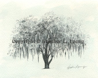 Live Oak Tree Drawing Print - Icy Blue Watercolor Painting - Hunter Army Airfield Savannah