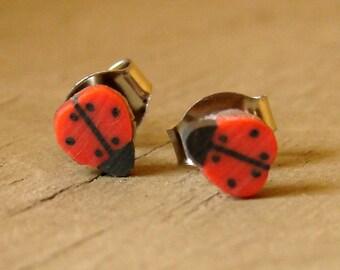 Ladybug Earrings - Miniature Insect Earrings - Little Bitty Ladybug Studs - Red and Black Earrings - Small Stud Earrings - Ladybugs Jewelry
