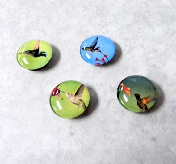 Magnets 4 Beautiful Round Hummingbirds Glass Cab Strong Handmade b