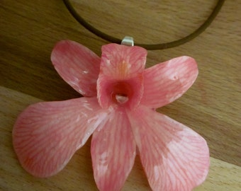 Real Dendrobium Orchid Necklace - Sweet Pink on 16 inch brown cord