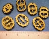 """Unique Natural """"Nut Slices"""" Buttons - Seven (7)"""