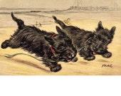 Scottie Dogs RUN Like the Wind Scotties On Beach Sand Summer Fun Fridge Magnet Scotty Scottish Terrier Vintage