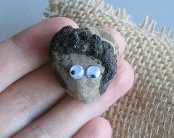 Pet rock with funny naturally formed hair