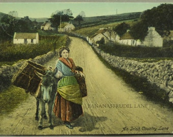 1917 Postcard. An Irish Country Lane