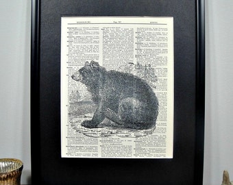 FRAMED Vintage Dictionary Print - Woodland Series - Bear