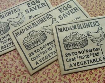 Antique Chicken 1900s Madam Blumers Egg Saver Recipe envelopes Ephemera