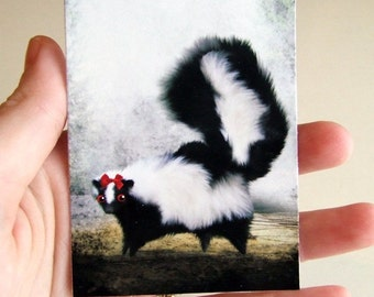 "ACEO ATC ""Ms. Skunk on Her Own "" Little Black and White Skunk - Artists Trading Card Mini Premium Fine Art Print 2.5x3.5 inches"