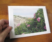 Beach Roses in Rhode Island Photo Notecard - New England Seascape Photography - Blank Greeting