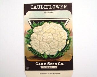 Vintage 1920s Unused Paper Seed Packet Cauliflower
