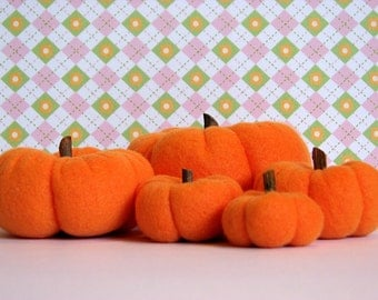 Now On Sale - Fall Pumpkins for the Harvest Season (set B)